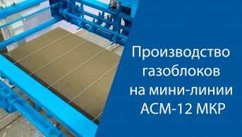 Производство газоблоков на линии АСМ-12 МКР