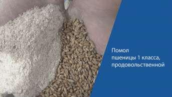 Помол пшеницы 1 класса